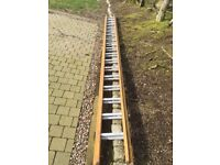 16ft Wooden Double Ladder