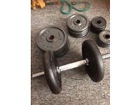 Dumbells 40kg cast iron and punchbag