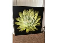 Very Large Lime Green Flower Canvas