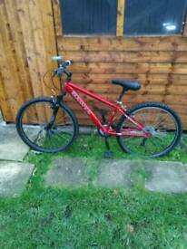 Boys dawes bicycle £45 ono