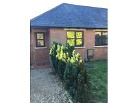 One bed semi - detached bungalow to rent in Wootton Bassett