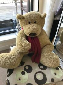 Big ted needs new home...