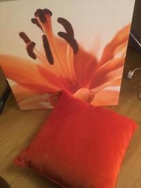 Next orange Lilly canvas and cushion