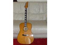 Vintage Ibanez LoneStar Acoustic guitar - immaculate