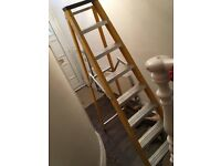 6ft A frame ladder
