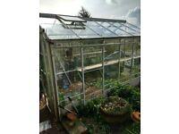 Large 12x8 glass greenhouse
