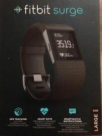 Fitbit Surge -large