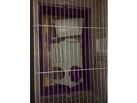 Guniea pig/ small rabbit cage