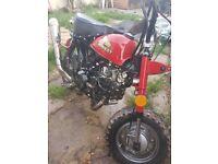 Monkey bike *running project 125cc*