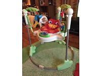 Fisher Price Jumperoo - 8 month old