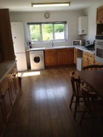ROOM TO LET 15th APRIL,LARGE HOUSE SHARE,TOOTING,SW19 BORDER,MITCHAM,WIFI,NO COUNCIL TAX,NEAR TRAINS