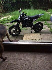 Brand new Orion 50cc dirt bike