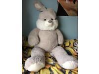 Giant rabbit teddy