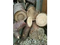 FireWood , logs, kindling , log burner , wood,