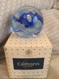 30 caithness glass paperweights