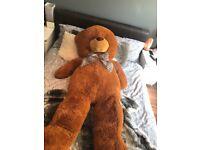 Giant teddy bear 5ft