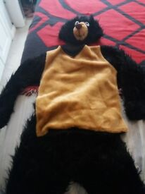 Dress up bear outfit