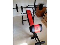 Multi Gym inc. Fully Adjustable Bench Press, Preacher Curl, Lat Pull Down & Leg Curl Attachments