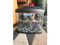 48l fish box fish tank full set up with 2 x light filter heater gravel nice ornament all work in pic