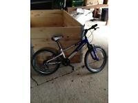 Trek MT60 bike