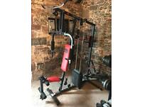Pro Power 3 station multi gym