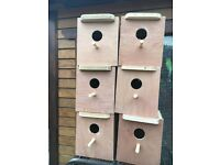 Budgies nest box for