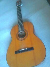Len Lewis Acoustic Guitar