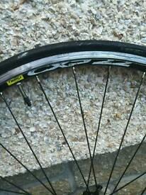 Mavic cxp 22 bicycle wheel x1