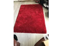 Living room rug, good condition