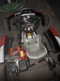 2014 go kart 160cc hasn't been raced