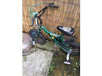 Used green bike