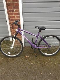 Womens Mountain bike, good condition