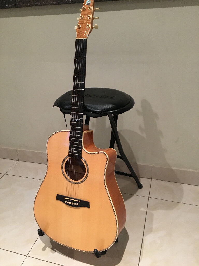 Accoustic Electric Guitar Seagull Artist Cameo