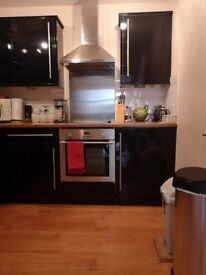 One Bedroom Available 1 minute walk from University of Aberdeen Campus