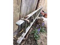 Long Single Ladder for Sale - Cheap!