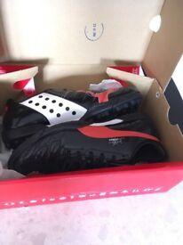 Puma trainers size 7 brand new