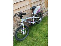 Children's frog bike (48)