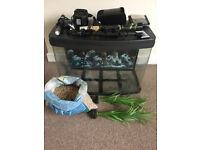 64L Fish Tank Aquarium CAN DELIVER