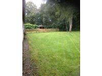 Grass cutting/ garden services