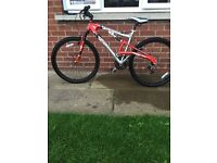 Kobi arizona bike for sale
