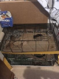 Gerbils cage and accessories