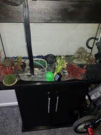 Fish tank& all accessories