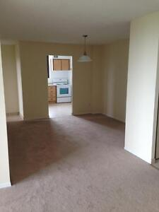 130 & 140 Lincoln Road - One Bedroom Apartment Apartment... Kitchener / Waterloo Kitchener Area image 5