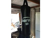 Arrial Boxing Punch Bag