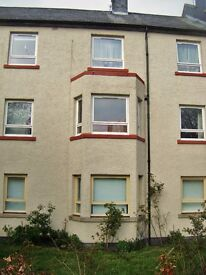Available! 2 Student Study Bed-sitting Rooms in Garden Flat. 10-15mins walk from Aberdeen University