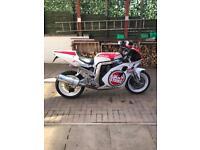 Suzuki GSXR1100WP