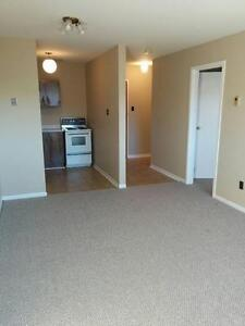 Roomy 1 bedroom just off Cashin Ave. St. John's Newfoundland image 1