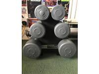 Pro fitness dumbbell set