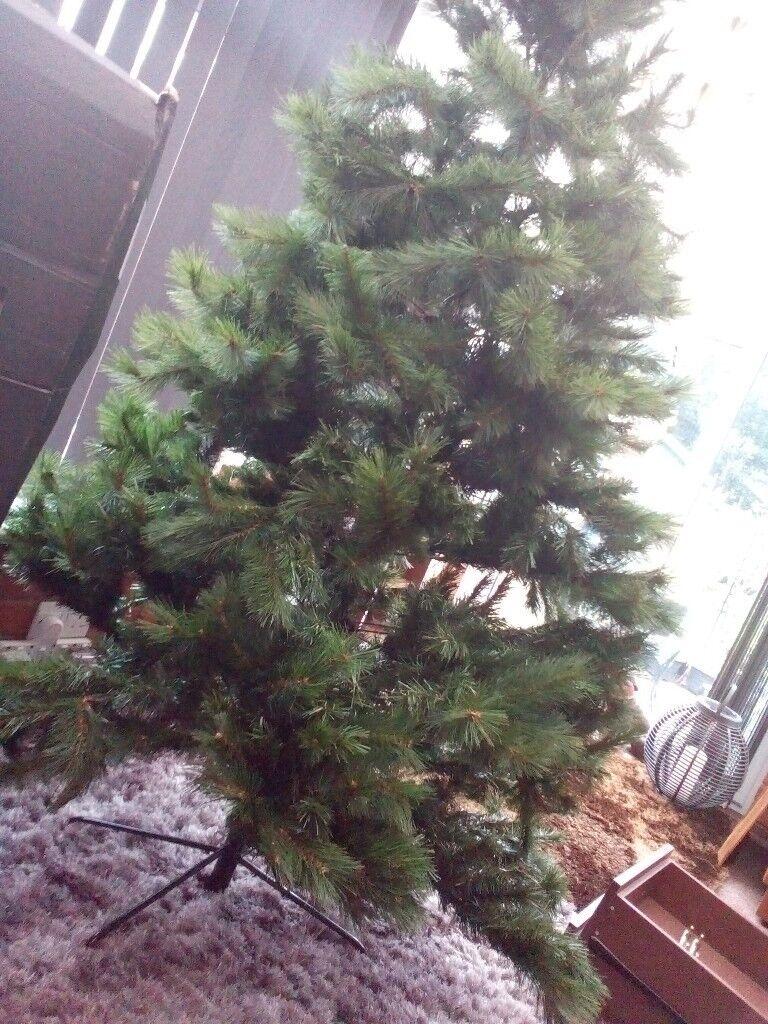 Christmas tree 8 feet in height