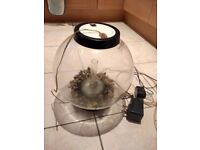 Bi Orb fish tank good condition with light includes pump and gravel